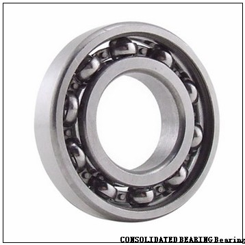 CONSOLIDATED BEARING 16024 M  Single Row Ball Bearings
