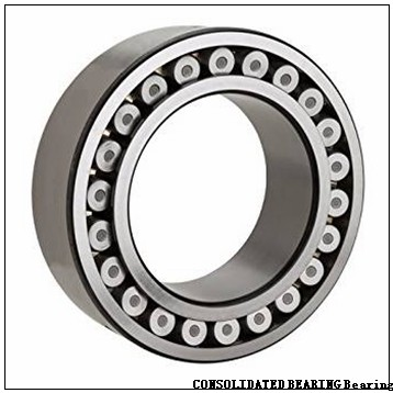 7.087 Inch | 180 Millimeter x 11.811 Inch | 300 Millimeter x 3.78 Inch | 96 Millimeter  CONSOLIDATED BEARING 23136 M C/3  Spherical Roller Bearings