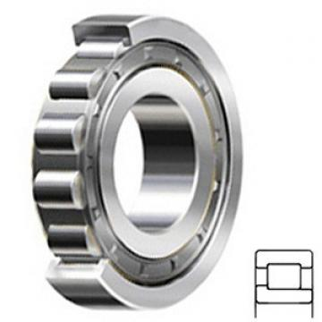 3.937 Inch | 100 Millimeter x 9.843 Inch | 250 Millimeter x 2.283 Inch | 58 Millimeter  CONSOLIDATED BEARING NJ-420 F C/4  Cylindrical Roller Bearings