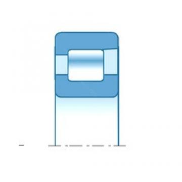 140,000 mm x 300,000 mm x 114,000 mm  NTN RNF2804 cylindrical roller bearings