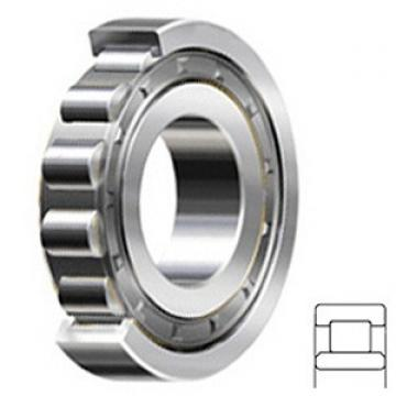 0.787 Inch | 20 Millimeter x 1.85 Inch | 47 Millimeter x 0.709 Inch | 18 Millimeter  CONSOLIDATED BEARING NU-2204E  Cylindrical Roller Bearings