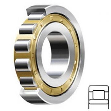 1.772 Inch | 45 Millimeter x 2.953 Inch | 75 Millimeter x 0.63 Inch | 16 Millimeter  CONSOLIDATED BEARING NU-1009 M C/3  Cylindrical Roller Bearings
