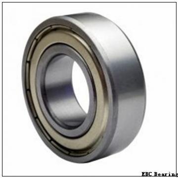 EBC 6010 2RS C3 Single Row Ball Bearings