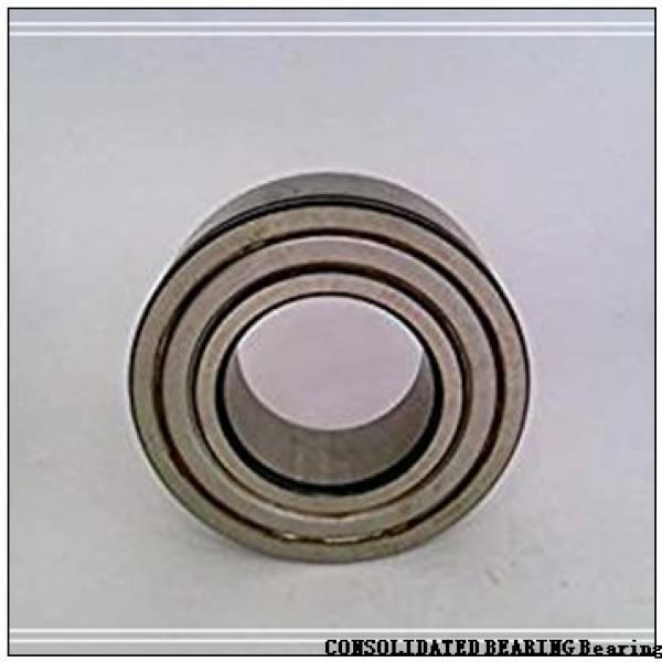 CONSOLIDATED BEARING N-206E M C/2  Roller Bearings #2 image