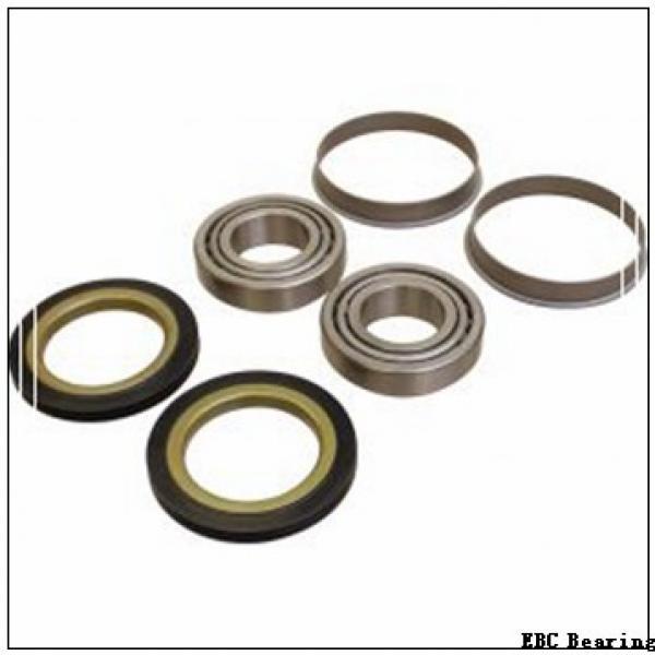 EBC R14 2RS BULK 10PK  Single Row Ball Bearings #1 image